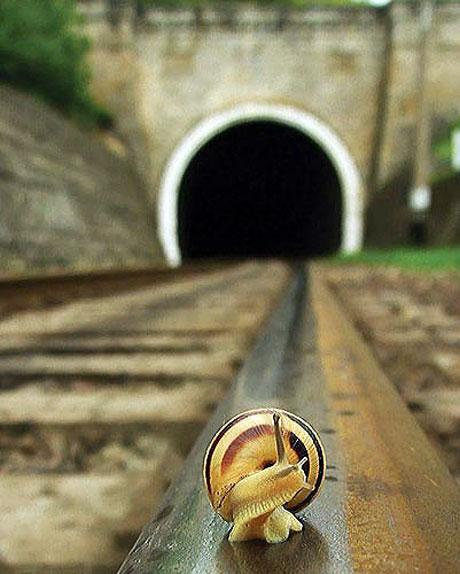 En güzel demiryolu fotoğrafları galerisi resim 3