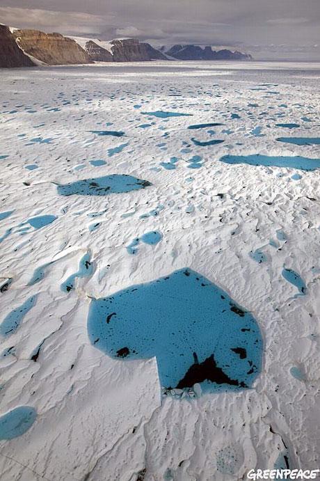 Petermann buzulu böyle eriyor galerisi resim 21