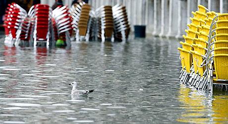 Venedik yine sular altında kaldı! galerisi resim 15