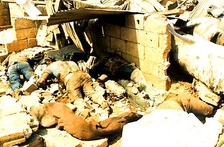 Sabra ve Şatilla katliamı galerisi resim 4
