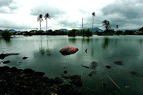 İklimler değişiyor, çevre SOS veriyor galerisi resim 12