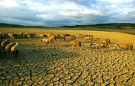 İklimler değişiyor, çevre SOS veriyor galerisi resim 3