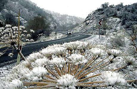 Yurttan kar manzaraları... galerisi resim 10