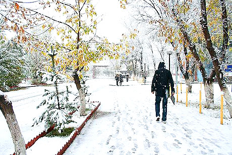 Yurttan kar manzaraları... galerisi resim 11