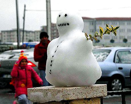 Yurttan kar manzaraları... galerisi resim 19