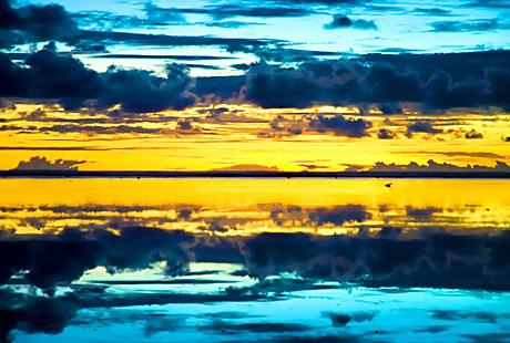 Hayatın Renkleri! galerisi resim 20