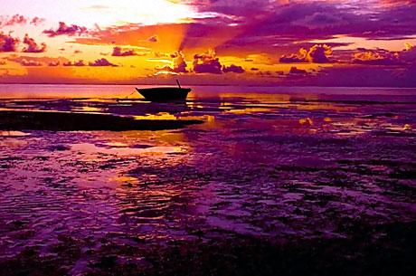Hayatın Renkleri! galerisi resim 24