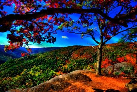 Doğadan muhteşem görüntüler galerisi resim 1