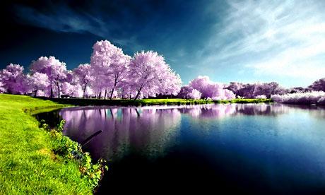 Doğadan muhteşem görüntüler galerisi resim 4
