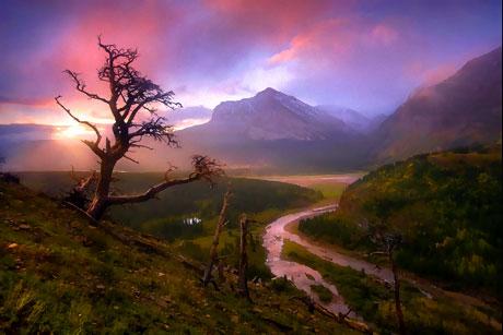 Doğadan muhteşem görüntüler galerisi resim 9