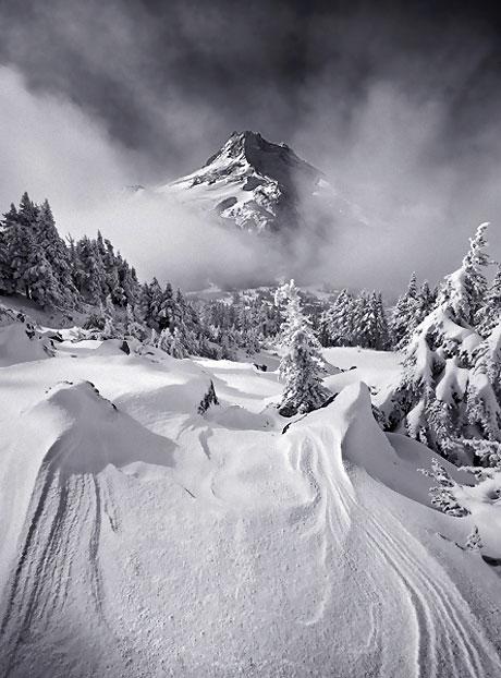 Muhteşem doğa fotoğrafları galerisi resim 19