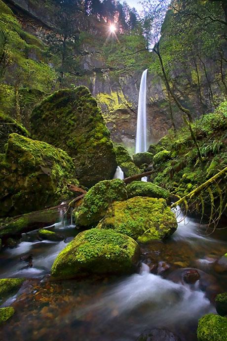 Muhteşem doğa fotoğrafları galerisi resim 2