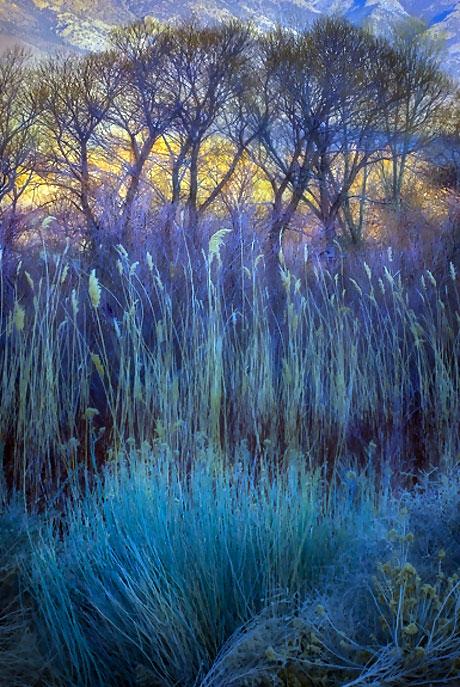 Muhteşem doğa fotoğrafları galerisi resim 26