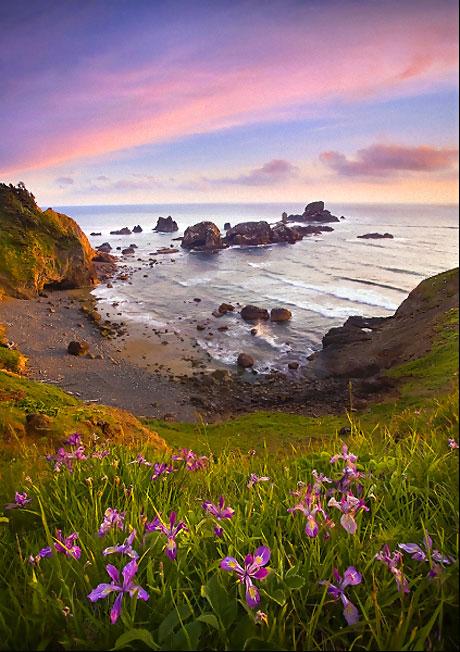 Muhteşem doğa fotoğrafları galerisi resim 3