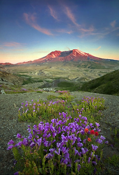 Muhteşem doğa fotoğrafları galerisi resim 4