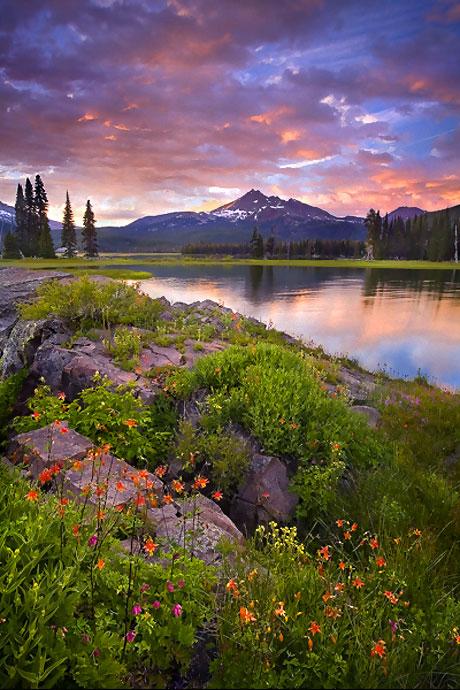 Muhteşem doğa fotoğrafları galerisi resim 5