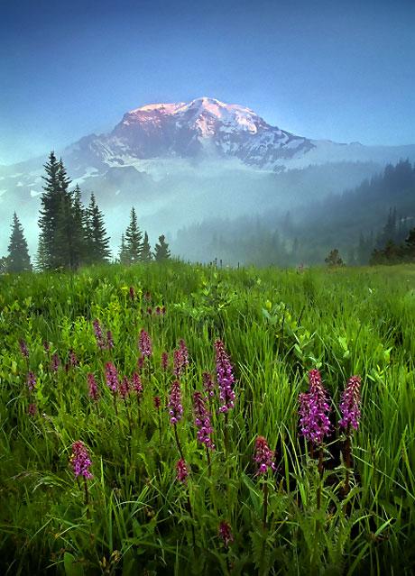 Muhteşem doğa fotoğrafları galerisi resim 7