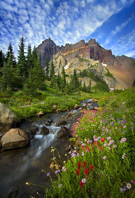 Muhteşem doğa fotoğrafları galerisi resim 8