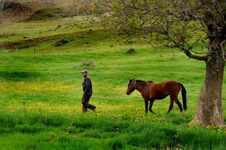 Muhteşem resimlerle bir gezinti (Foto:R.Öğüt) galerisi resim 13