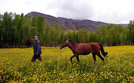 Muhteşem resimlerle bir gezinti (Foto:R.Öğüt) galerisi resim 14