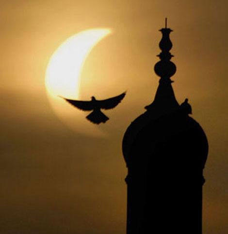 En güzel Güneş tutulması resimleri galerisi resim 14