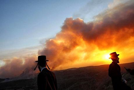 Yangın İsrail'i bu hale getirdi galerisi resim 12