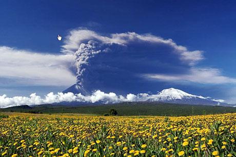 Doğa'dan mucizevi görüntüler! galerisi resim 10