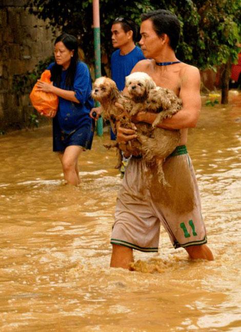 Filipinlerdeki Sel Felaketi galerisi resim 11
