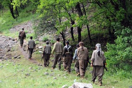 Dersim'de PKK'li grup sivilleri uyardı galerisi resim 21