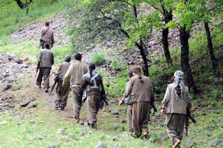 Dersim'de PKK'li grup sivilleri uyardı galerisi resim 26