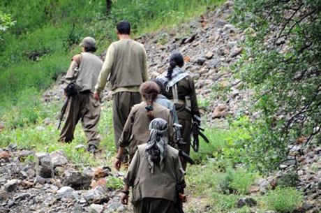 Dersim'de PKK'li grup sivilleri uyardı galerisi resim 28