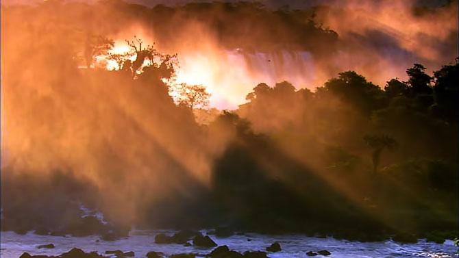 Vahşi Amazon galerisi resim 16