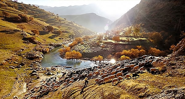 Doğu Kürdistan Palangan Köyü galerisi resim 8