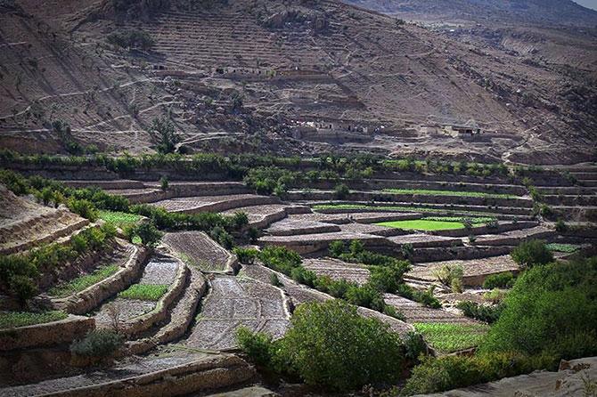Şengal Dağı'nda hayat... galerisi resim 30