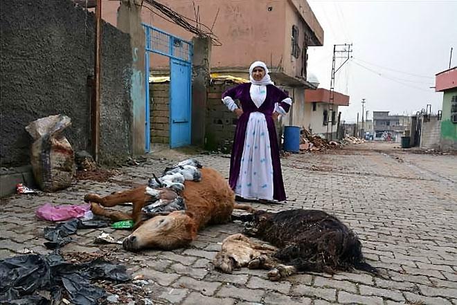 Silopi'den yıkım görüntüleri galerisi resim 19