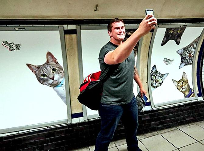Londra metrosunu kediler bastı galerisi resim 11
