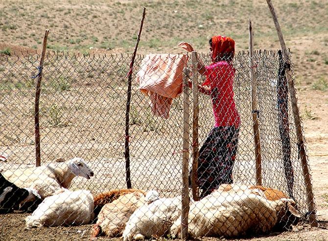 Fotoğraflarla Horasan göçerleri galerisi resim 12