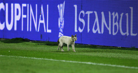 Son UEFA Kupası sahibini buldu galerisi resim 13