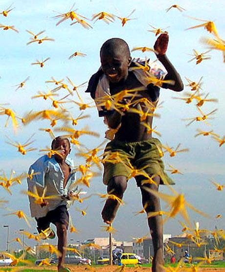 Reuters, en iyi fotoğrafları seçti galerisi resim 45