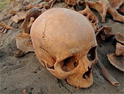 Batman'da kafatası ve kemik bulundu