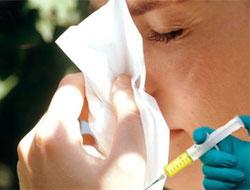Grip Aşısı Domuz Gribinde Etkili mi?