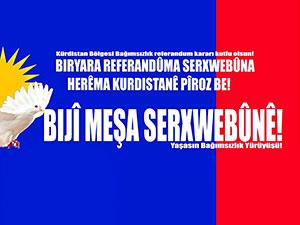 HAK-PAR'ın referandum afişleri yasaklandı