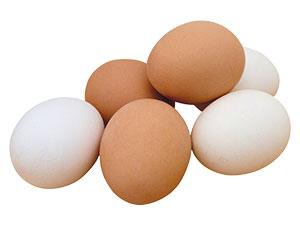 Güney Kore'de yumurta üretimi yasaklandı