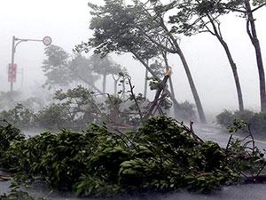 Çin'in güneyini Hato Tayfunu vurdu