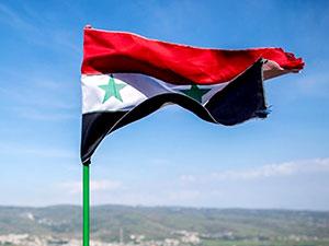 'Suriye Ordusu Doğu Guta'da İlerliyor'