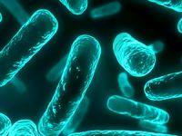 Uzmanlar uyardı: Antibiyotik kıyametinin eşiğindeyiz