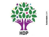 HDP: Partimiz sadece Kürt partisi değil