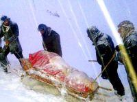 Yüksekova'da kızaklı hasta kurtarma operasyonu