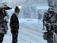 İsveç -40 dereceyi gördü: 5 ölü